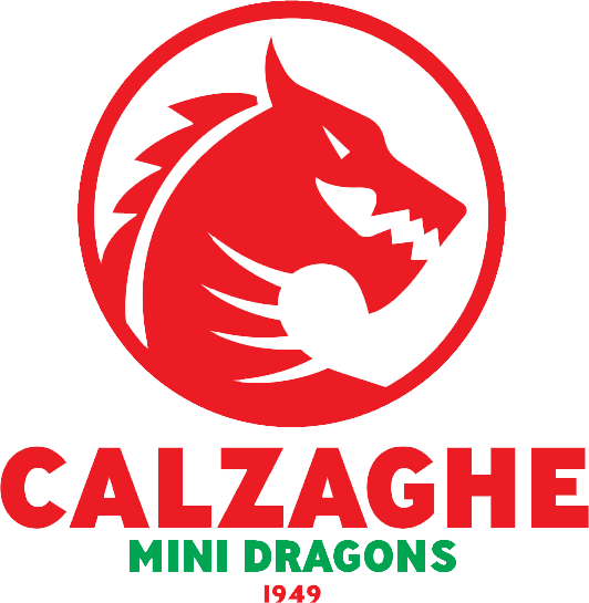 Calzaghe Mini Dragons
